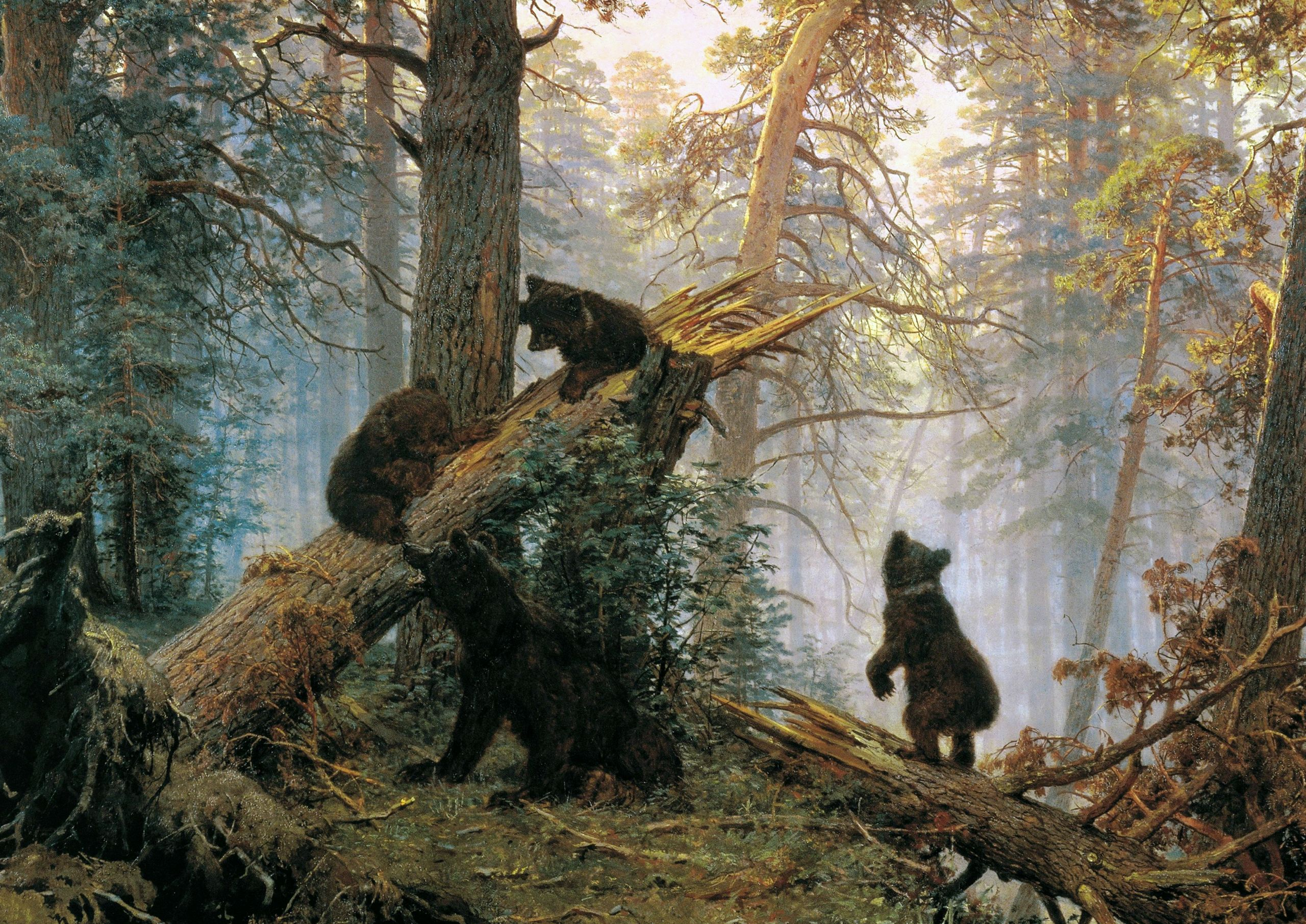 Shishkin morning in a pine forest picture