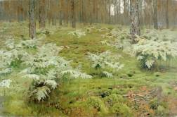Fern in the Woods 1895