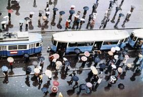 Moscow trolleybus vintage, rainy day