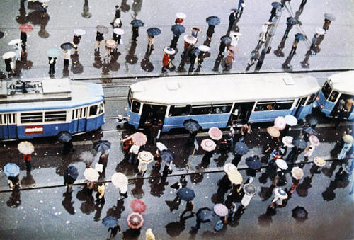 Moscow trolleybus vintage, rainy day
